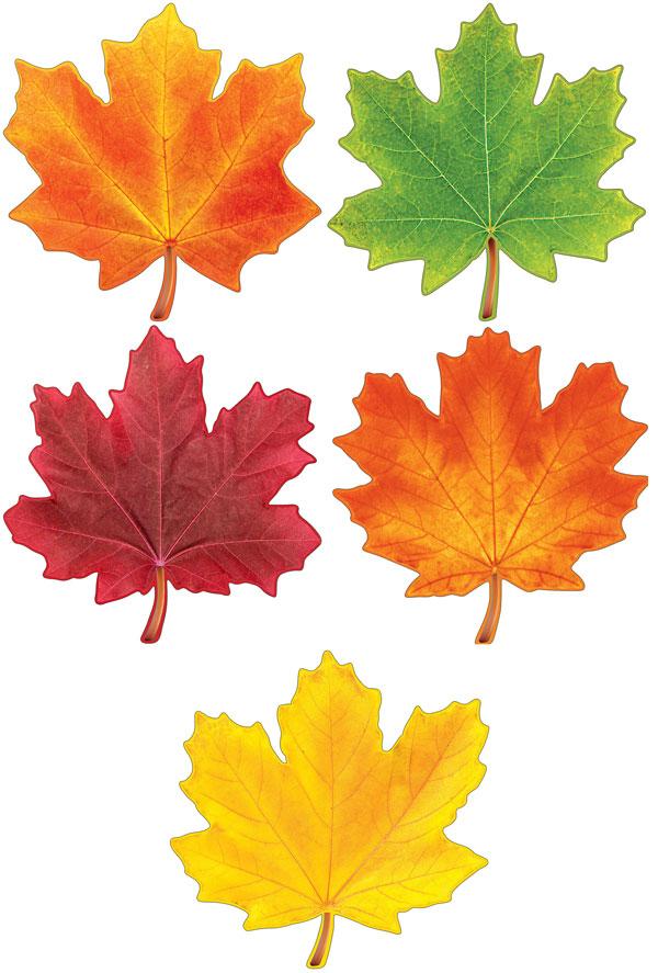 участок водоемом, картинки осенних листьев для вырезания цветные дар